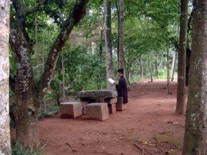 lector en Vietnam en jun jardin
