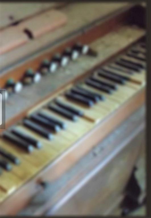 La imagen tiene un atributo ALT vacío; su nombre de archivo es 2-organo333-2.jpg